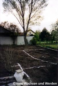 2004_Mondlandschaft2wz