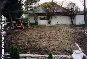 2004_Mondlandschaft3wz