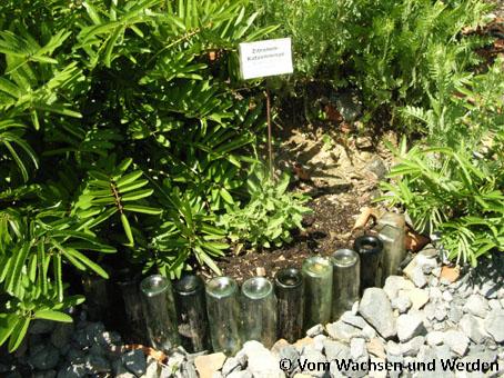 05WagnerFlaschen_2007-05-18wz