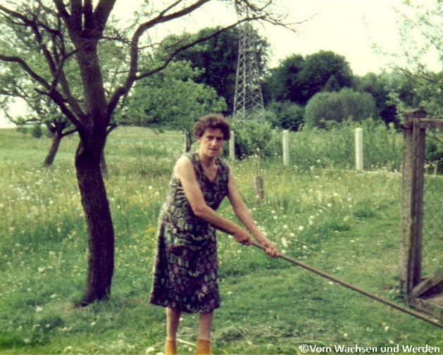 Tante1985Rechenwz
