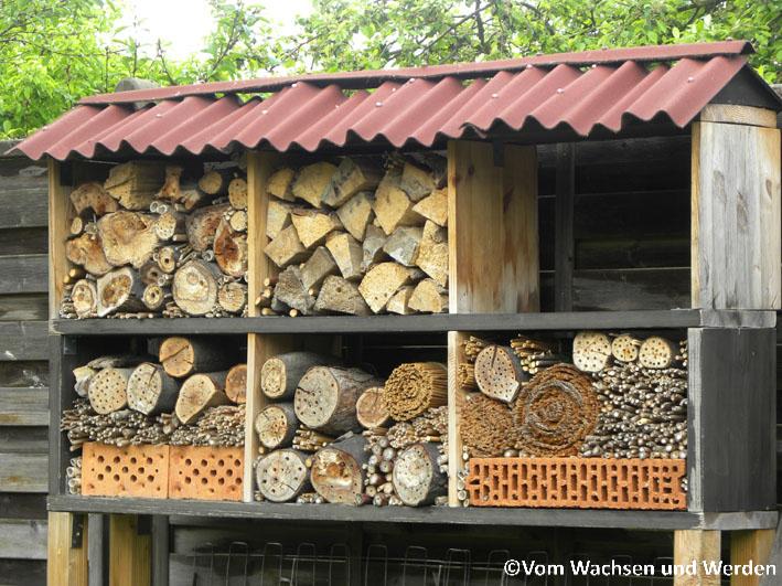 ein insektenhotel ist kein selbstbedienungsrestaurant vom wachsen und werden. Black Bedroom Furniture Sets. Home Design Ideas