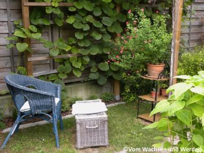 sitzplatz in der kiwilaube vom wachsen und werden. Black Bedroom Furniture Sets. Home Design Ideas